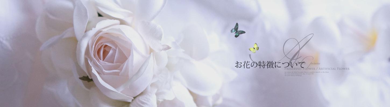 お花の特徴について